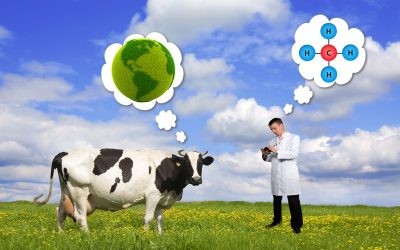 Climate or Cows:  What's the answer?
